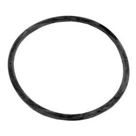 Sta-Rite 35505-1437 ABG Pump Lid O-Ring