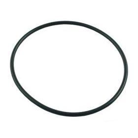 Sta-Rite 35505-1438 ABG Pump Seal Plate O-Ring